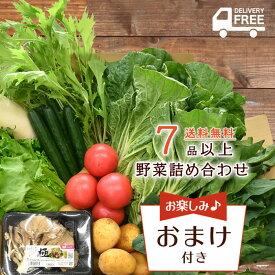 【送料無料!】 7品以上 野菜 詰め合わせ セット | 野菜詰合せ 詰め合わせ 野菜セット 新潟 旬 上越フルーツ
