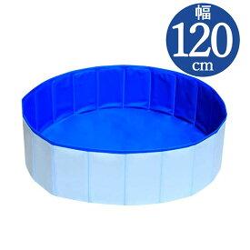 わんちゃんプール PP120【 120 × 30 cm】Dog Pool 20205