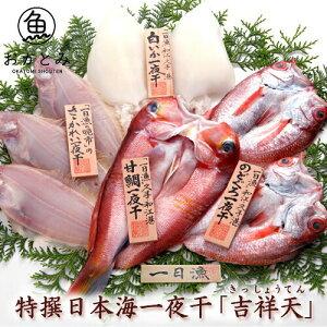 【国産】お取り寄せ 特撰日本海一夜干し「吉祥天」(きっしょうてん) ノドグロ 甘鯛 のどぐろ 白いか(またはするめいか) 魚 かれい 島根産 ひもの 岡富商店 無添加 干物 詰め合わせギフ