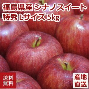 りんご 5kg シナノスイート 福島県産 福島県知事認定 特秀 Lサイズ 13〜18玉 リンゴ 林檎 アップル フルーツ ASIAGAP認証取得 産地直送 送料無料