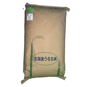 【令和元年産】北海道北竜町産 農薬節減米 おぼろづき 玄米 30kg 【送料無料】