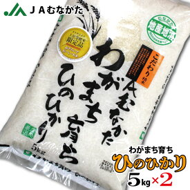 【送料無料】JAむなかたわがまち育ち「ひのひかり」5kg×2 福岡県産 JAむなかた直送 お米 白米 ごはん 10kg