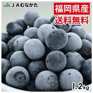【送料無料】急速冷凍!農薬不使用ブルーベリー1.2kg(600g×2) ふるさと納税で大人気! 果物 フルーツ ジャム ジュース スムージー