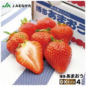 【2021年1月受付分】博多あまおう 約270g×4パック(約1080g) 送料無料 福岡県産 JAむなかた直送 ふるさと納税で大人気! いちご 苺