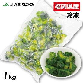 【送料無料】大容量1kg 福岡県産 冷凍ブロッコリー JAむなかた直送 加工用 業務用 家庭用にも