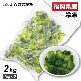 【送料無料】大容量2kg 福岡県産 冷凍ブロッコリー JAむなかた直送 加工用 業務用 家庭用にも