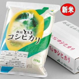 【新米】栃尾(とちお)コシヒカリ10kg(新潟産こしひかり)令和3年産【送料無料】