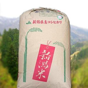 栃尾(とちお)コシヒカリ玄米(令和2年産)30kg(新潟県産こしひかり)【送料無料】