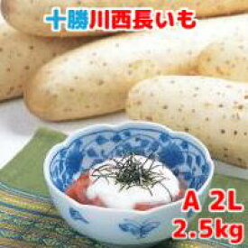 長いも(十勝川西長いも)北海道産長芋 A2Lサイズ 2.5kg(3本入)平成30年産