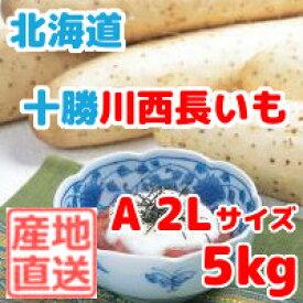 長いも(十勝川西長いも)北海道産長芋 A2Lサイズ 5kg(6本入)平成30年産