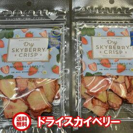 【送料無料】スカイベリー ドライフルーツ 15g×2袋入り無添加/無着色/ドライイチゴ/プレゼント/おやつ【とちおとめと一味違う】