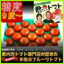 ★1周年クーポンで10%引★人気過ぎの為最短27日以降発送です。都内トマト専門店が認めた本格派フルーツトマト食べた事ある人しか分からないこの旨さ。糖度9度以上:...