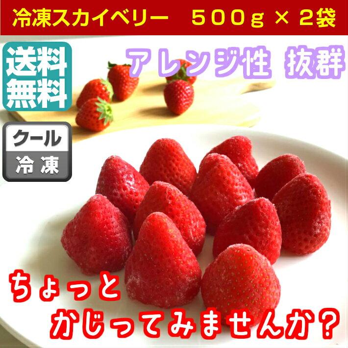 【送料無料】日本一の生産量を誇る栃木県のイチゴ<冷凍 スカイベリー1kg>ちおとめと一味違う♪おやつにピッタリかぶりつき、冷た〜いスムージーに是非!栃木県佐野市産/冷凍/イチゴ
