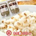 国産100%使用500g→700円/JAだから安全・安心!徹底された栽培管理された安全安心で美味しいもち麦/送料無料/雑穀/ダ…