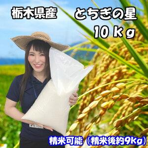 【一部地域送料無料】新米 令和2年産 栃木県産 とちぎの星 10kg(精米後9kg)