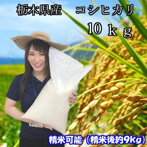 【一部地域送料無料】令和2年産新米 栃木県産 コシヒカリ 10kg(精米後約9kg)