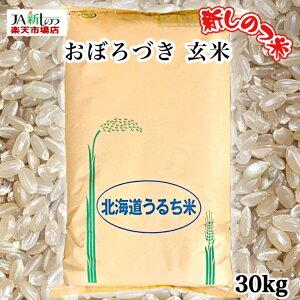 【数量限定!】【令和2年産】 おぼろづき 北海道産 玄米 30kg【新しのつ米】