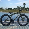 ESTEC MUDSKIPPER mudskipper! FATBIKE NEW fat bike