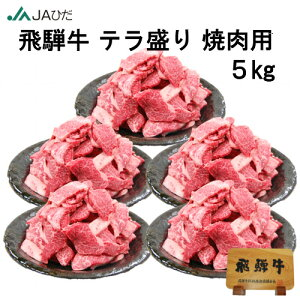 【JAひだ】飛騨牛 テラ盛り 焼肉用 5kg 冷凍 送料無料 ※北海道・沖縄別途送料1000円※