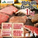 【JAひだ】飛騨牛 焼肉セット 1kg(250g×4種類 食べ比べ) 3〜5人前 【冷凍】 焼き肉 観光地応援 和牛 バーベキュー …
