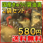 国産きゅうり醤油漬2袋セット
