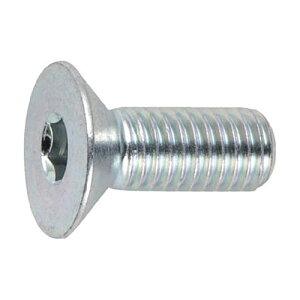TRUSCO 三価クロメート(白) 六角穴付皿ボルト 寸法M4×20mm 1パック(21本)