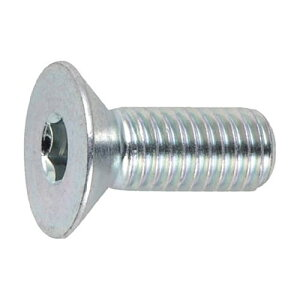 TRUSCO 三価クロメート(白) 六角穴付皿ボルト 寸法M6×10mm 1パック(21本)