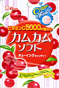 【送料無料】★まとめ買い★ ライオン菓子 カムカムソフト ×10個【イージャパンモール】