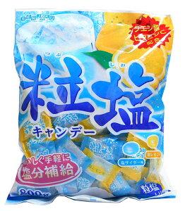 ★まとめ買い★ 扇雀飴 粒塩キャンデー800g ×10個【イージャパンモール】