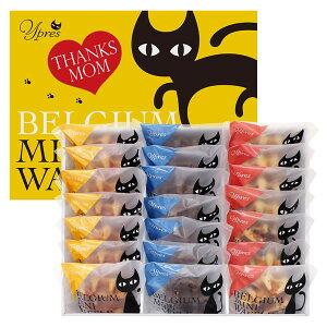 【キャッシュレス5%還元】【送料無料】【母の日】母の日 イーペルの猫祭り ベルギーミニワッフル M−YJ−BW【代引不可】【ギフト館】