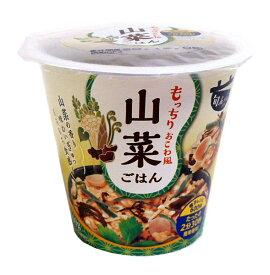 幸南食糧 旬deriz山菜ごはん160g【イージャパンモール】