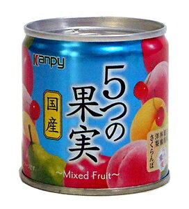 ★まとめ買い★ カンピー国産 5つの果実 M2号缶 ×12個【イージャパンモール】