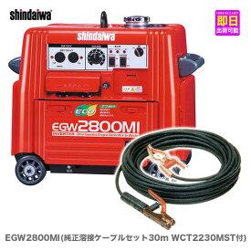 【数量限定】〈新ダイワ〉発電機兼用 エンジン溶接機 EGW2800MI〔純正 溶接ケーブルセット30M WCT2230MST 付〕【代引不可・車上引き渡し品】