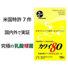 【送料190円】Kawai カワイ80 お試しサイズ 乳酸球菌 カワイ株 80mg含有/包 10包入り 河合康雄 河合乳酸球菌研究所 Kawai80 正規代理店