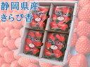 送料無料 イチゴ きらぴ香 静岡県産 4パック 産地直送 国産 1キロ 苺 いちご 贈答用 果物 フルーツ 静岡