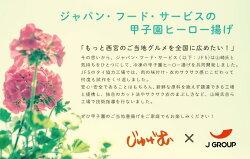 ジャパン・フード・サービスと甲子園ヒーロー揚げ