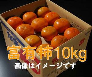【福岡県朝倉産】富有柿L〜2Lサイズ・42〜36玉JA筑前あさくら