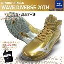 予約 2020年9月上旬発売 MIZUNO ミズノ ウエーブダイバース LG3 Ltd 20th 20周年記念 限定モデル WAVE DIVERSE フィットネスシューズ …