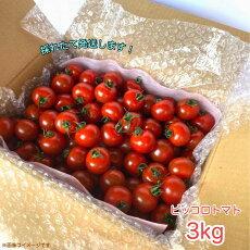 ピッコロトマト3.Kg