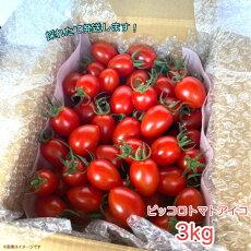 ピッコロトマトアイコ3kg