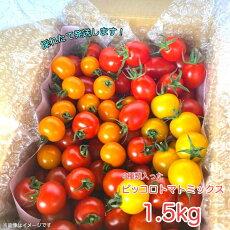 ピッコロトマトミックス1.5kg