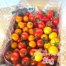 ピッコロトマトミックス3kg