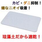 【アイリスオーヤマ】速乾快適バスマット(Mサイズ)