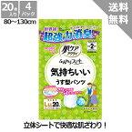 【日本製紙クレシア】肌ケアアクティふんわりフィット気持ちいいうす型パンツ(22枚)