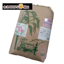 コシヒカリ 10kg キラッと玄米 福島県 令和二年産 調製済玄米 送料無料