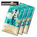 コシヒカリ 10kg×3袋 精白米 30kg 福島県 令和二年産 送料無料 新米