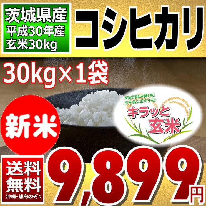 【新米】コシヒカリ キラッと玄米 30kg (茨城県産) 30年産 調整済玄米 送料無料 【通常発送】