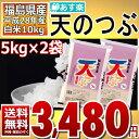 【平成28年】福島県産 白米 天のつぶ 10kg(5kg×2)【あす楽_土曜営業】【送料無料】