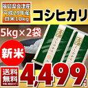 (新米)コシヒカリ 5kg×2袋 白米 10kg (会津産) 29年産 送料無料 あす楽_土曜営業