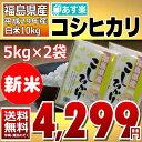 ((新米)) コシヒカリ 5kg×2袋 白米 10kg 福島県 29年産 送料無料 あす楽_土曜営業